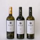 Hvem vil gå på polet og etterlyse armensk vin?