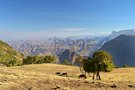 16435513-panoramic-view-from-the-simien-mountains-national-park-overlooking-the-ethiopian-plateau-under-hard-