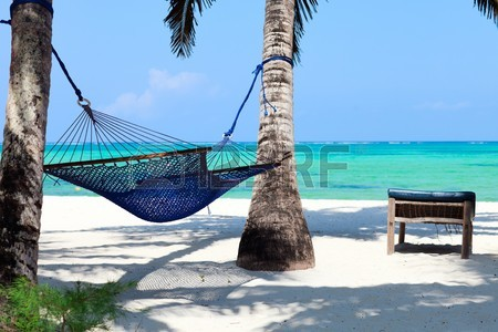 7820025-perfect-tropical-paradise-beach-of-zanzibar-island-with-palm-trees-and-hammock
