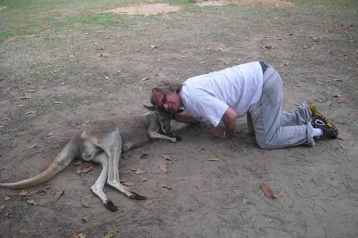 Hugging kangaroo