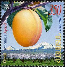220px-ArmenianStamps-407